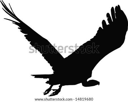 Vulture silhouette in action:vector illustration. - stock vector