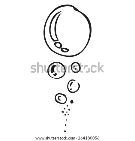 Water Bubbles Doodle - stock vector