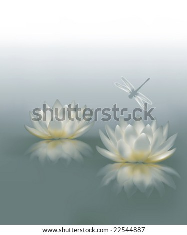 Water Lily Background - stock vector