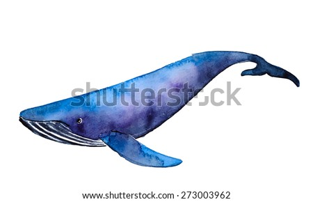 Watercolor blue whale, vector