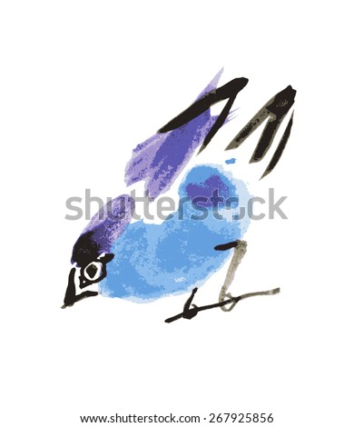 watercolor drawing bird, robin at white background, hand drawn vector illustration - stock vector