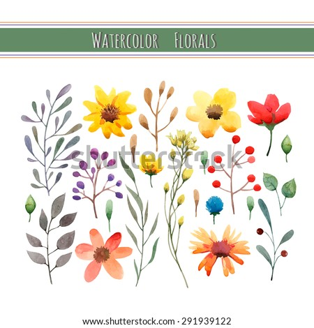 Watercolor floral collection with leaves and flowers. Wedding, romantic collection.Spring or summer design for invitation, wedding or greeting cards. Vector illustration - stock vector