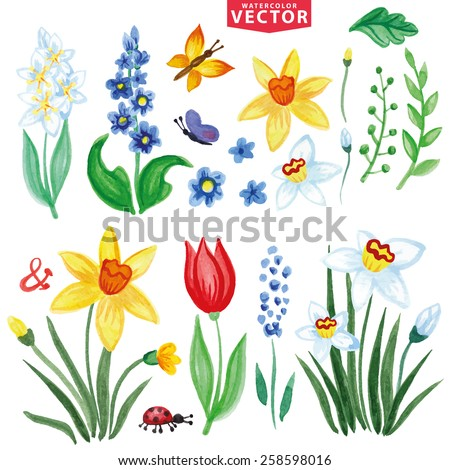 Watercolor flowers,insects,branch.Vintage floral vector,isolated clipart, scrapbooking elements,icons set,kit.Bright colors,spring,summer Floral bouquet maker - stock vector