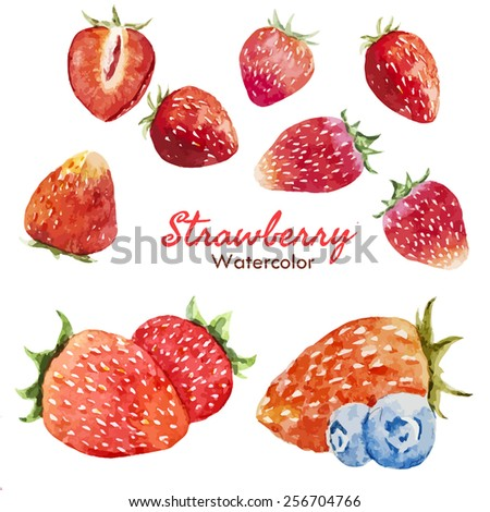 watercolor, food, berry, strawberry - stock vector