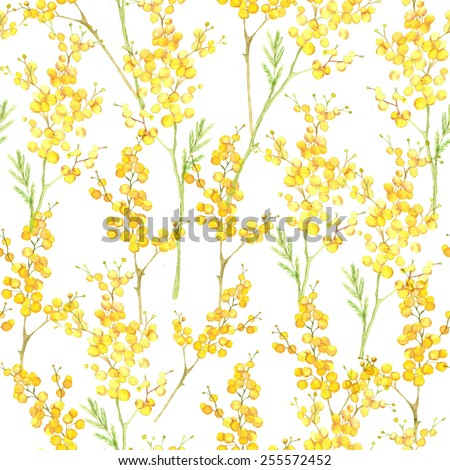Watercolor hand drawn seamless pattern with spring tender flowers - yellow mimosa on the white background - stock vector