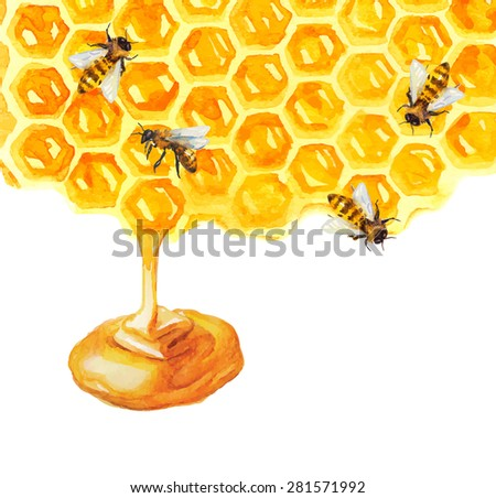 Watercolor Honeycomb and bee over white, Vector - stock vector