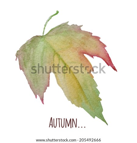Watercolor illustration of autumn leaf isolated on white. Vector image eps10 - stock vector