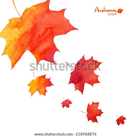 Watercolor painted orange vector maple leaves fall - stock vector