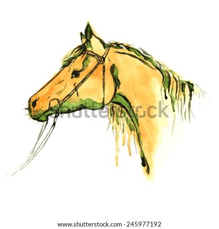 Watercolor painting horse - stock vector