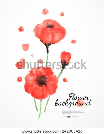 Watercolor poppy flowers. Vector illustration