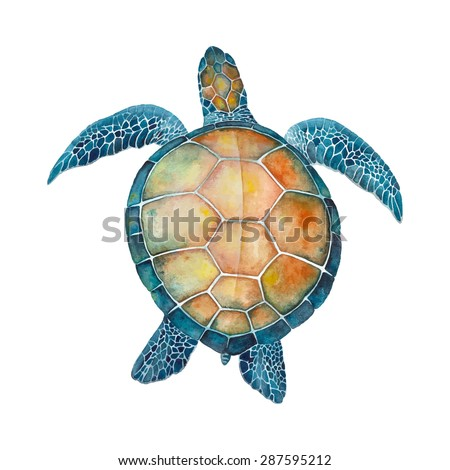 Watercolor Sea Turtle - stock vector