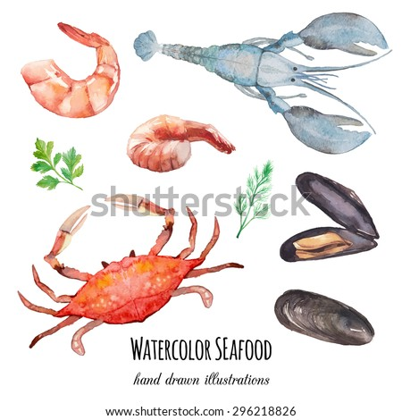 Watercolor seafood  set. Hand drawn mussel shells, shrimps, crab, lobster, parsley, thyme, dill isolated on white background. Vector food and spices herbs illustrations - stock vector