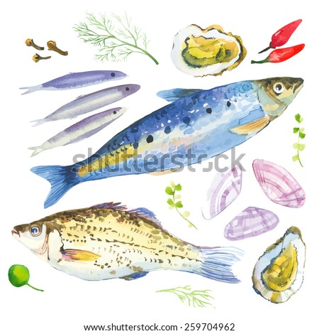 Watercolor set with fish, seafood, oysters,sardina, basil and other herbs and spices. Hand-drawn on a white background.  - stock vector