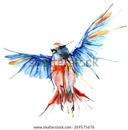 Watercolor-style vector illustration of bird. - stock vector