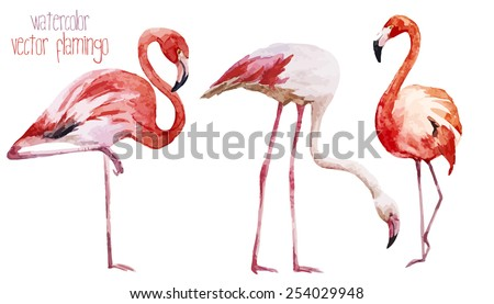 watercolor vector flamingos stock vector 254029948