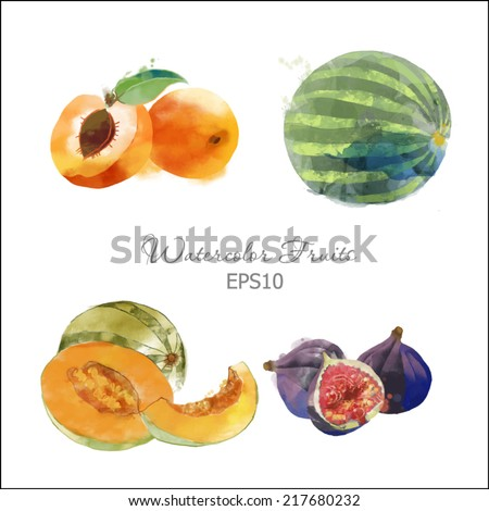 Watercolor vector fruits set of watermelon, figs, apricot and melon - stock vector