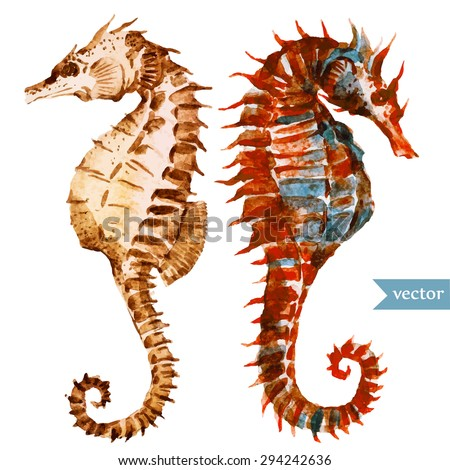 watercolor vector illustration seahorse, vintage pattern beautiful red seahorse - stock vector
