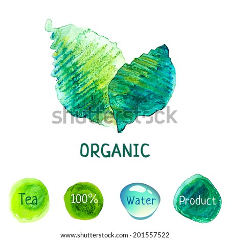 Watercolor vector nature concept. Organic product label. Green tea. Eco friendly leaves. Clear water. Bio illustration.  - stock vector