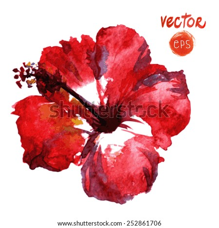 watercolor vector red hibiscus. diverse Tropical Flowers. single watercolor flower. Isolated on white background. vector element for your design. red exotic paradise hibiscus. painted hibiscus  - stock vector