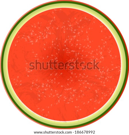 watermelon - stock vector