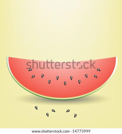Watermelon slice - stock vector