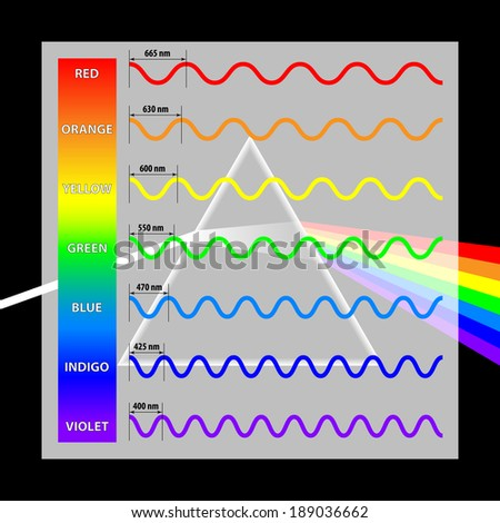 Wavelength colors in the spectrum - stock vector