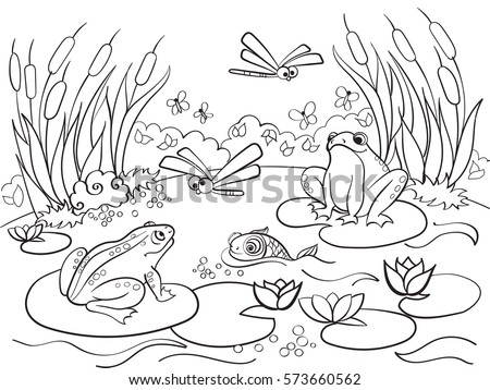 Wetland Landscape Animals Coloring Book Adults Stock Vector HD ...