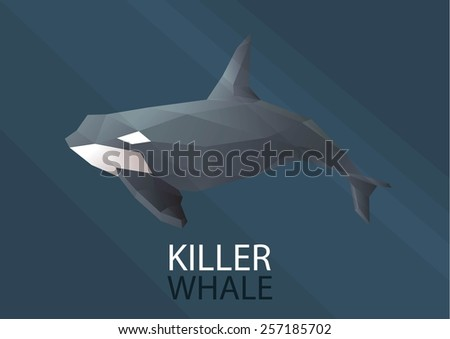 Whale Vector low poly polygon