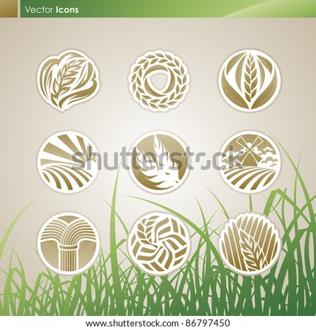 Wheat and rye. Icon set. - stock vector