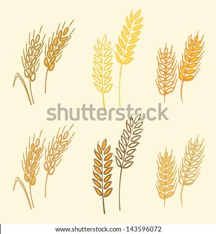 Wheat barley ears vector illustration - stock vector