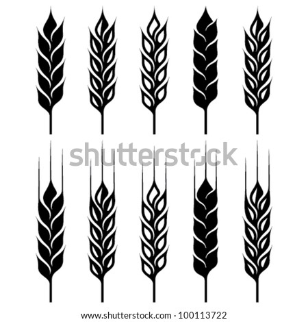 wheat ear icon set - stock vector