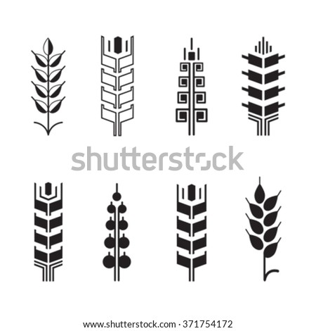 Wheat ear symbols for logo icon set, leaves icons, graphic design elements - stock vector