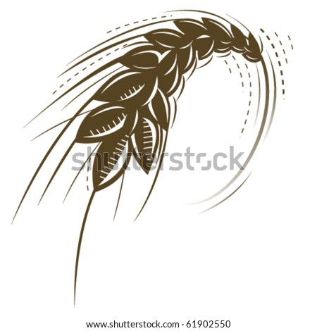 wheat isolated vector icon - stock vector
