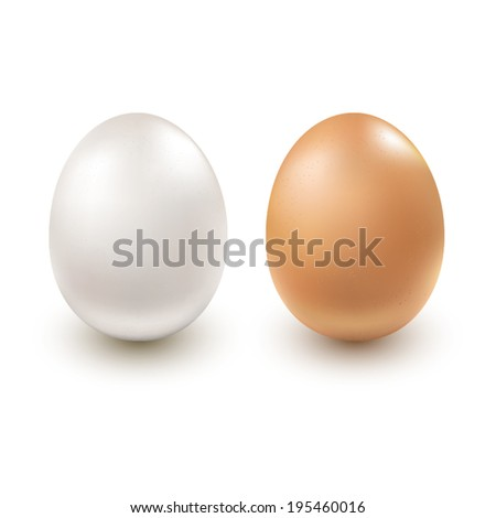 White and Brown Egg. Egg realistic on a white background.