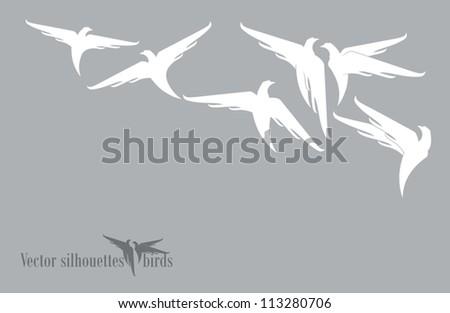 White birds. - stock vector