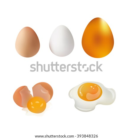 White, Brown, Gold Egg, Broken Egg and Fried Eggs Vector Illustration Icon. Isolated On White Background. Feather Products - stock vector
