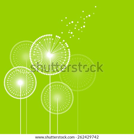 White dandelions on green background - stock vector