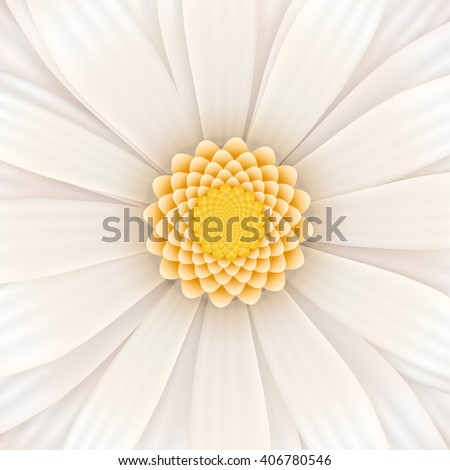White gerbera flower in bloom, realistic square illustration - stock vector