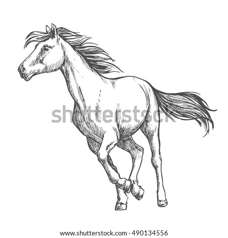 white horse running freely wild mustang stallion gallops against wind with waving mane and tail