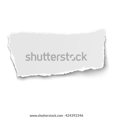 White paper tear isolated on white background with soft shadow