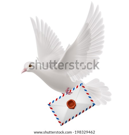 White pigeon fly with mail in beak - stock vector