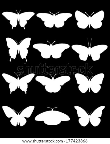 White silhouettes of butterflies on a black background, vector - stock vector