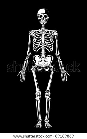 skeleton foot stock images, royalty-free images & vectors, Skeleton