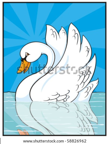White swan in the water - stock vector