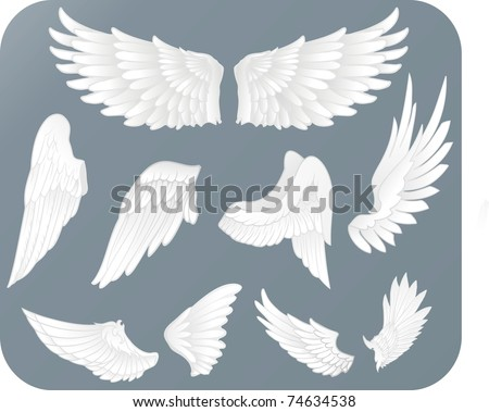white wings - stock vector