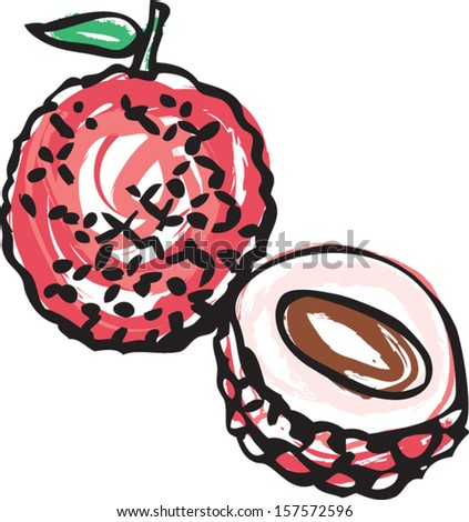 Whole and half Lychee illustration vector