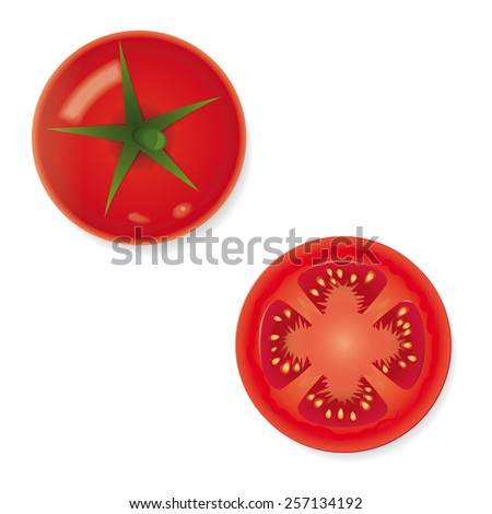 Whole and Halved Tomato Fruit Vector Icon. Vector Illustration of whole and half tomato isolated. Shadows on separate layer. - stock vector