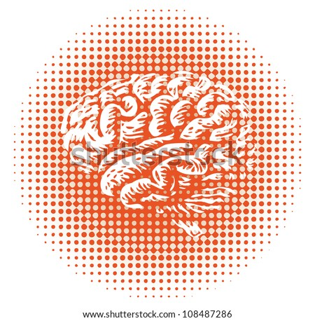 whole human brain isolated - illustration - stock vector