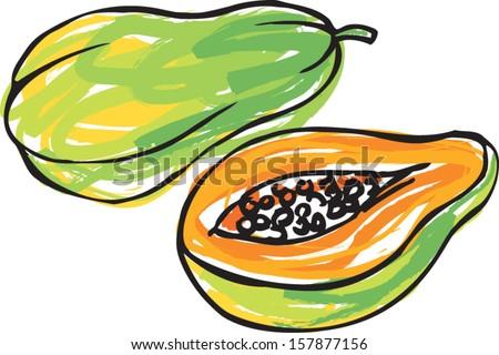 Whole sliced & segment papaya vector illustration