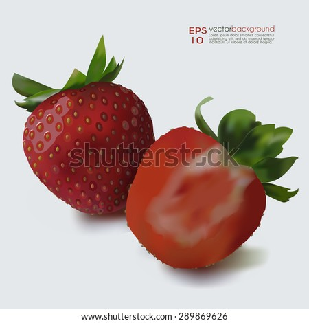 Whole Strawberry & half of the fruit vector illustration. Fruit realistic image against white background. Use for food and cosmetic package labeling, decoration, illustration. Layered, editable design - stock vector